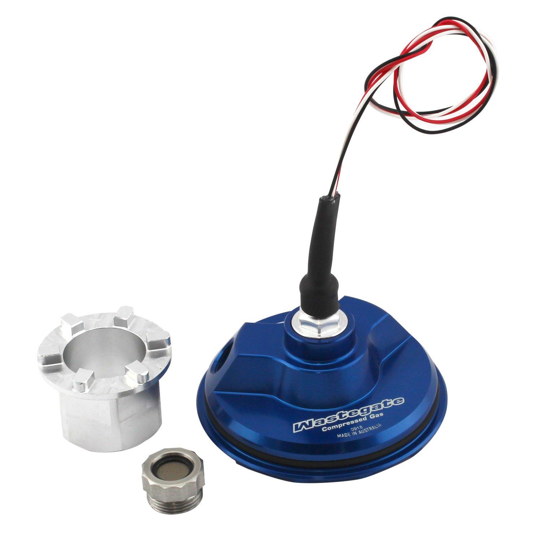 WG38/40 CG Sensor Cap (Blue) - Click to enlarge