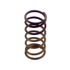 Gen-V WG60 5psi Purple Inner Spring - Click for more info